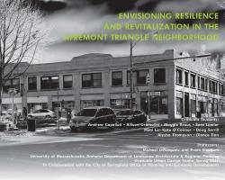 Envisioning Resilience & Revitalization in the Apremont Triangle Neighborhood - report cover page